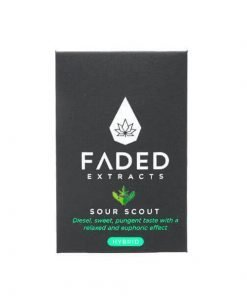 Faded Sour Scout 600X600 1