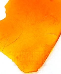 Shatter Medusa Extracts