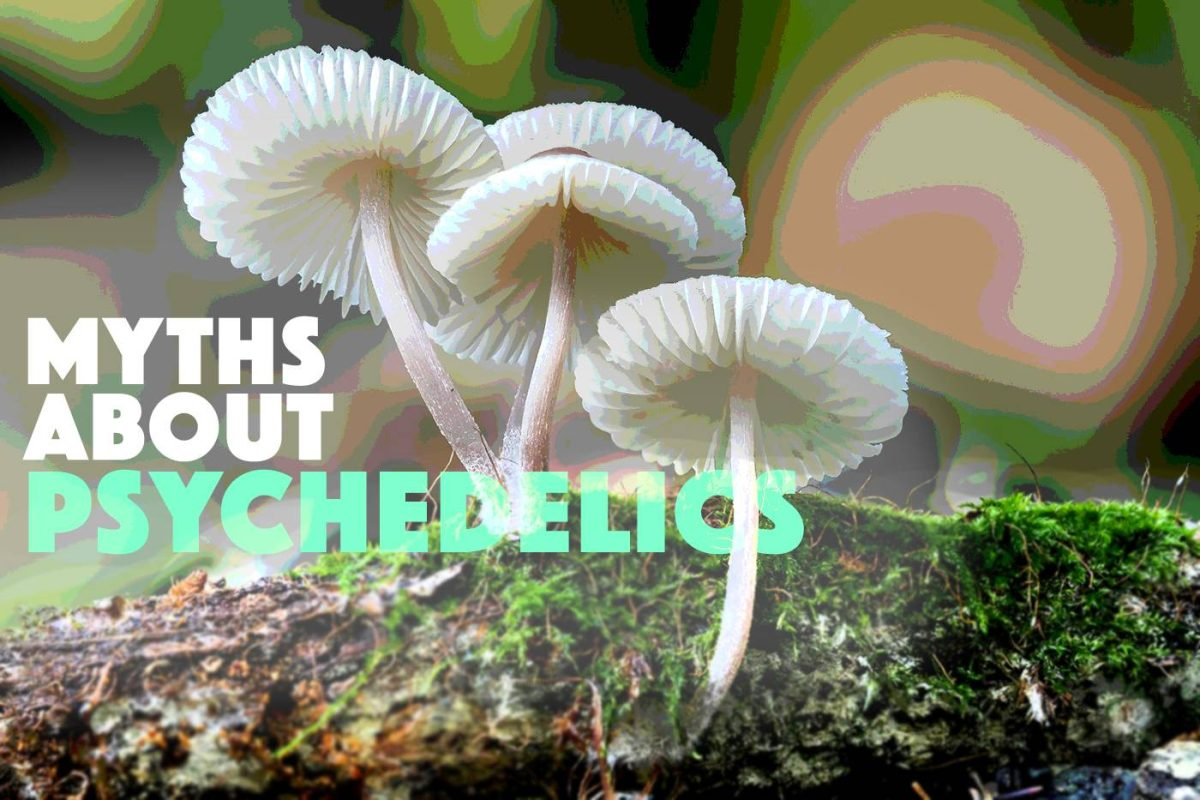 Myths About Psychedelics (1)